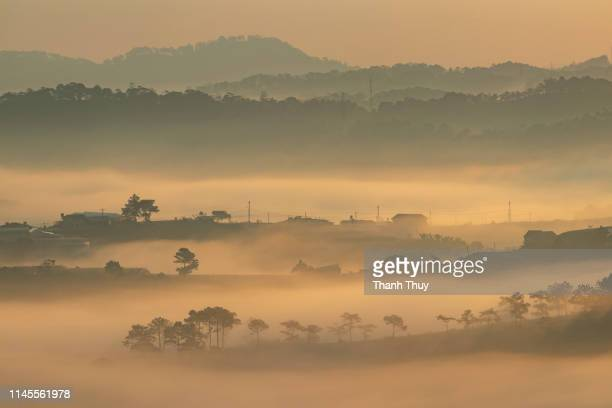 Sunrise on the misty hill