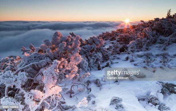 Sunrise on the mountains