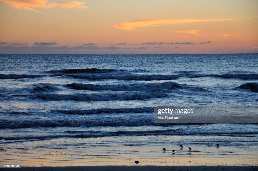 Sunrise over atlantic ocean, New Smyrna Beach, Florida, USA : Stock Photo