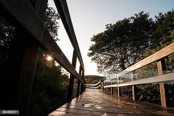 Sunrise over boardwalk. Karridene, Kwazulu Natal, South Africa