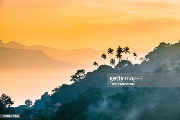 sunrise over bogambara lake, sri lanka - sri lanka fotografías e imágenes de stock