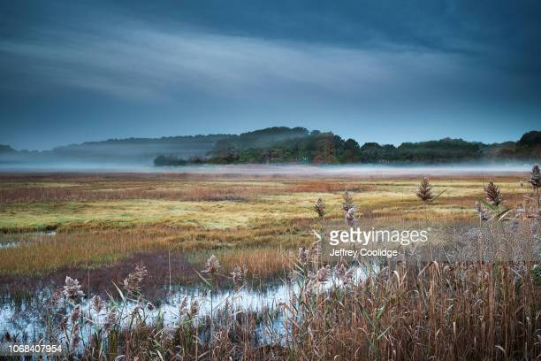 sunrise over cape cod saltwater marsh - marsh stock pictures, royalty-free photos & images