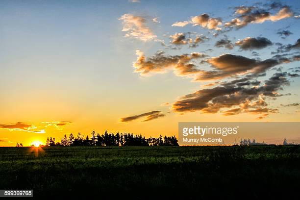 sunrise over farm fields - murray mccomb stock pictures, royalty-free photos & images