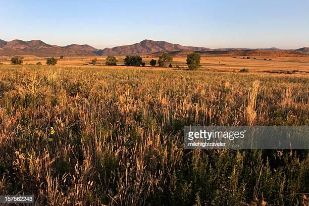 Sunrise over grasslands and foothills, Colorado