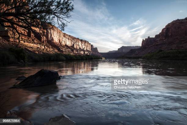 sunrise over green river - christina felschen stock photos and pictures