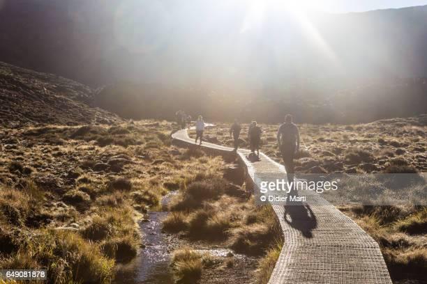 Sunrise over hikers on the Tongariro Alpine Crossing