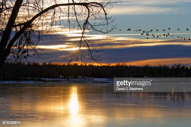 Sunrise Over Ice As Geese Fly OUt