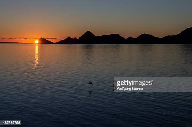 Sunrise over Isla Carmen near Puerto Escondido Sea of Cortez Baja California Mexico with Brown pelicans flying over the water surface
