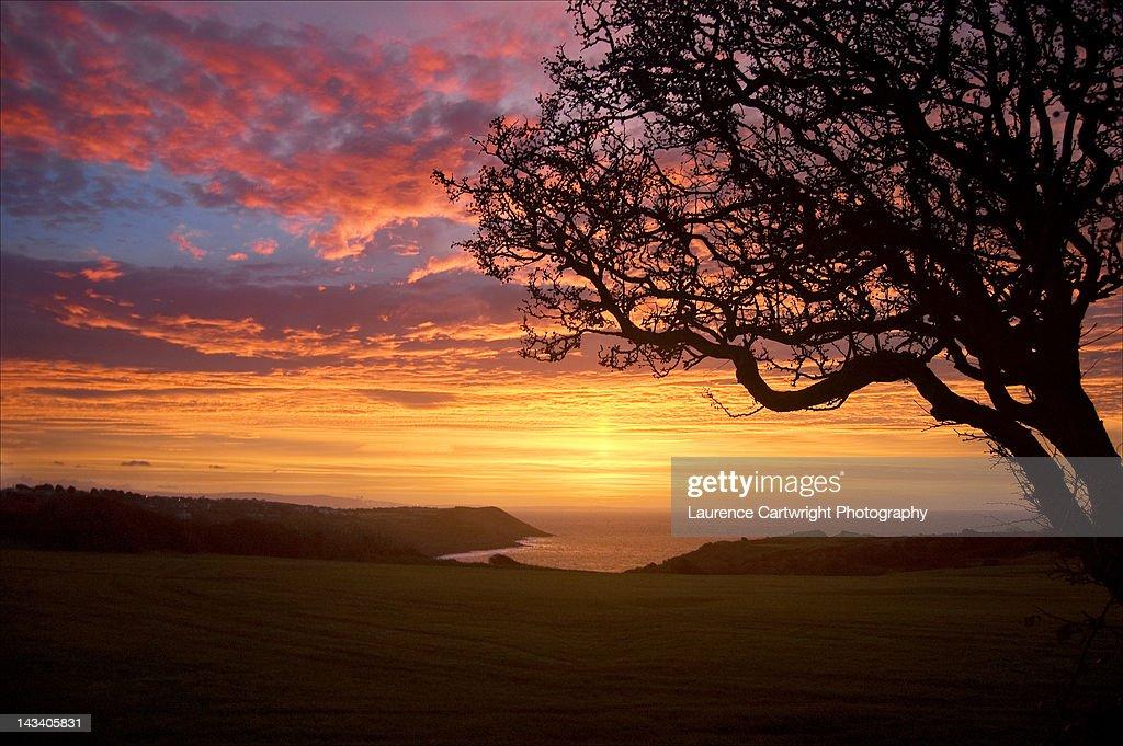 Sunrise over langland bay : Stock Photo