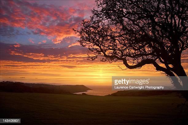 Sunrise over langland bay
