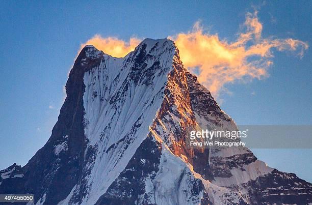 sunrise over machhapuchhre, tadapani, annapurna region, nepal - machapuchare stock photos and pictures
