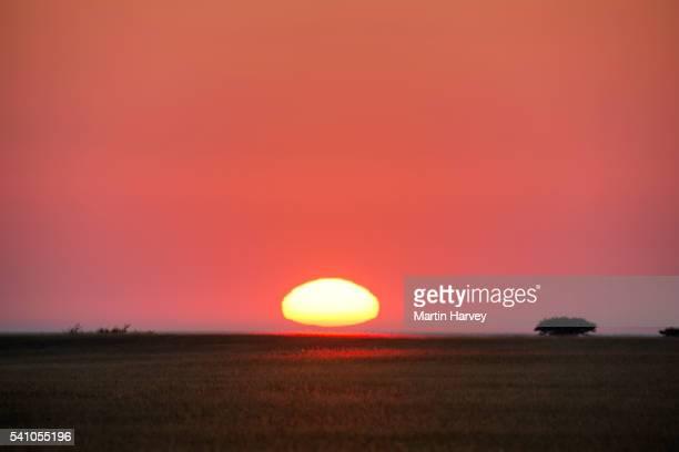 Sunrise over Makgadikgadi Pans, Botswana