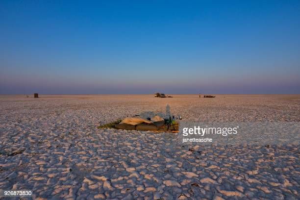 sunrise over makgadikgadi salt pans, botswana - kalahari desert fotografías e imágenes de stock