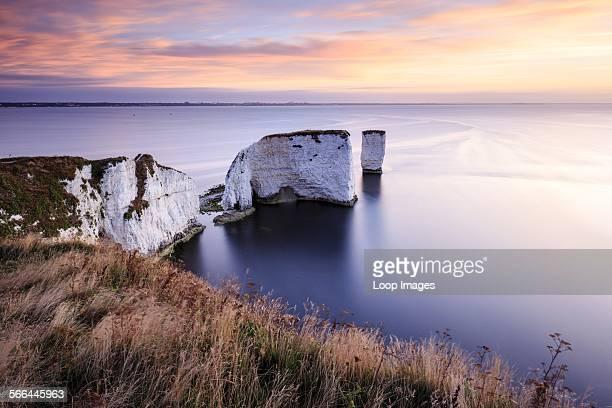 Sunrise over Old Harry Rocks in Dorset