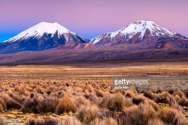 sunrise over parinacota volcán en parque nacional de sajama, bolivia - bolivia fotografías e imágenes de stock