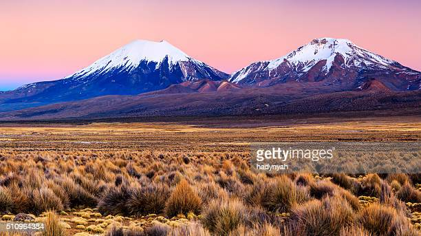 sunrise over parinacota volcano in sajama national park, bolivia - bolivia stockfoto's en -beelden