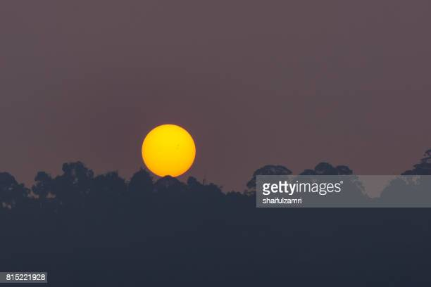 sunrise over rain forest during haze season in malaysia - shaifulzamri stock pictures, royalty-free photos & images