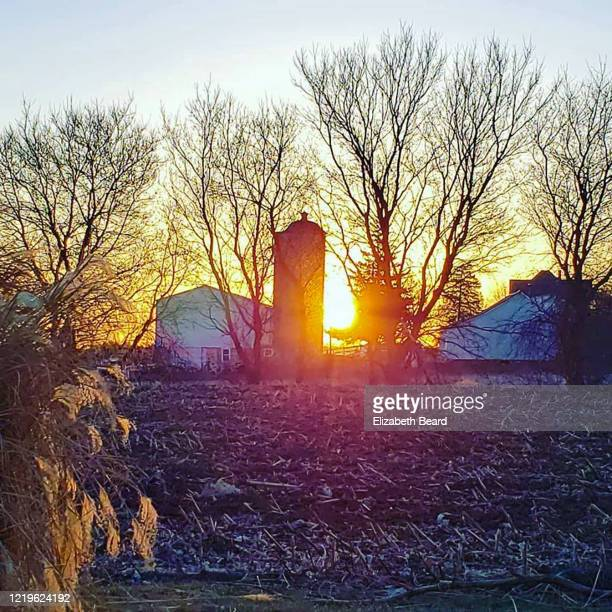 sunrise over southern wisconsin farm in early spring - vilas_county,_wisconsin stock pictures, royalty-free photos & images