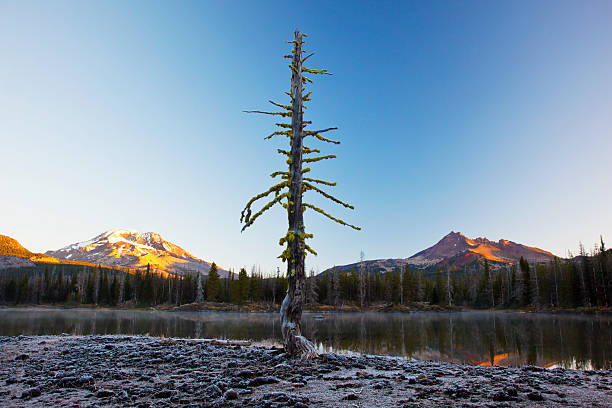 Sunrise Over Sparks Lake And The Three Sisters Wilderness Wall Art