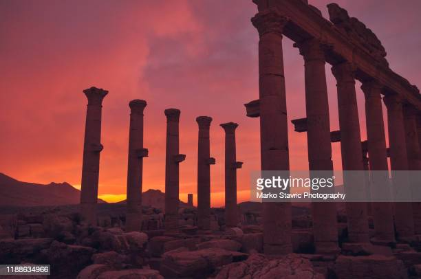 sunrise over syria desert - treasuregold stock pictures, royalty-free photos & images