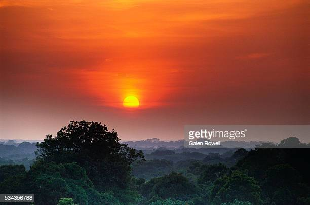 sunrise over the amazon river basin - river amazon stock pictures, royalty-free photos & images