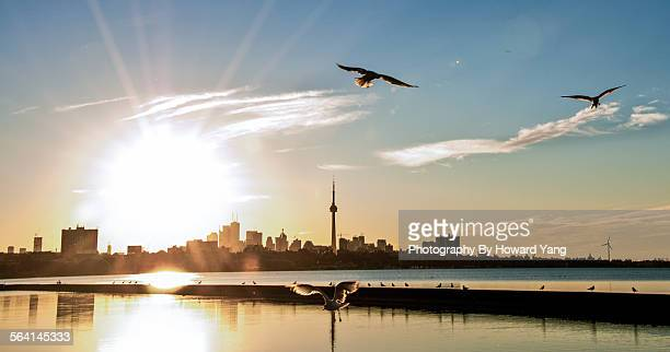 Sunrise over the city of Toronto