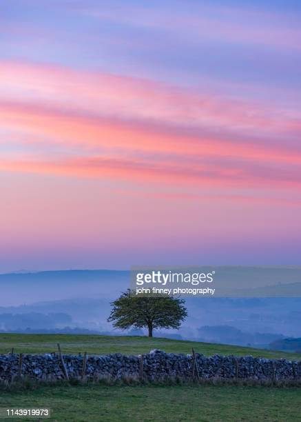 sunrise over the derbyshire dales,  peak district. uk - may flowers stock pictures, royalty-free photos & images