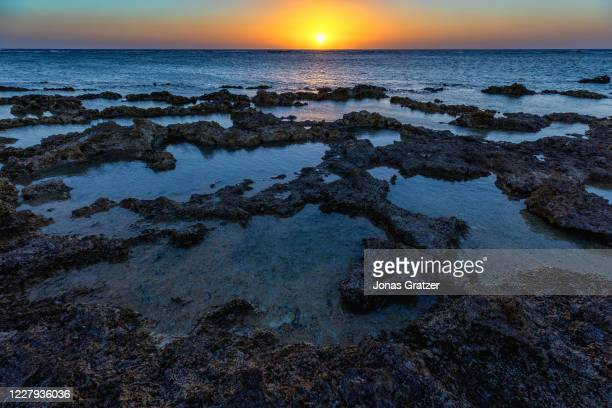 Sunrise over the great barrier reef at lady Elliot island. In the quest to save the Great Barrier Reef, researchers, farmers and business owners are...