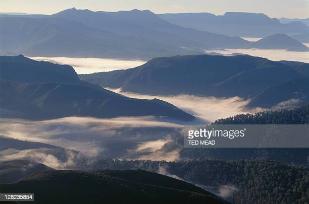 sunrise over the huon valley, southwest national park, tasmania - valley stock pictures, royalty-free photos & images
