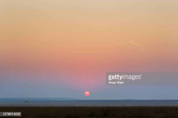 sunrise over the maasai mara national reserve - kenya stock pictures, royalty-free photos & images