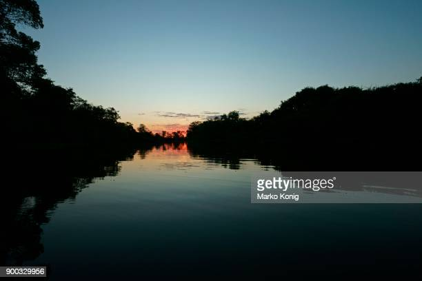 sunrise over the river, pantanal, mato grosso, brazil - cuiabá stock photos and pictures