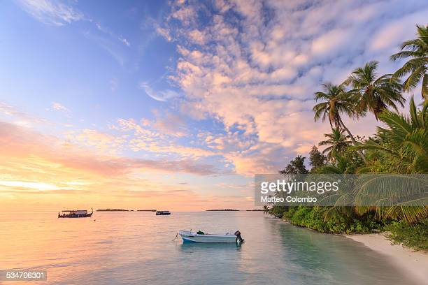 Sunrise over tropical beach with palms, Maldives