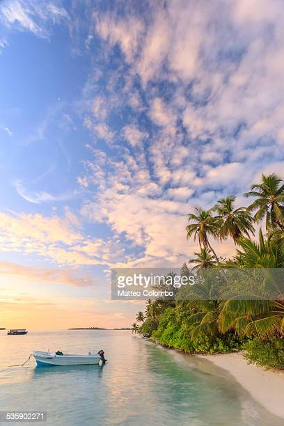 sunrise over tropical beach with palms, maldives - インド洋 ストックフォトと画像
