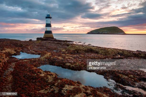 sunrise over trwyn du lighthousem, penmon point, lighthouse, anglesey, wales - famous place stock pictures, royalty-free photos & images