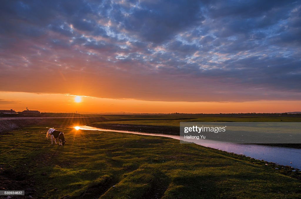 Sunrise over winding river in grassland, northern China : Stock Photo