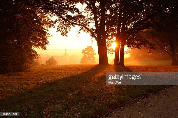 sunrise park bad muskau view new palace - sonnig stock pictures, royalty-free photos & images