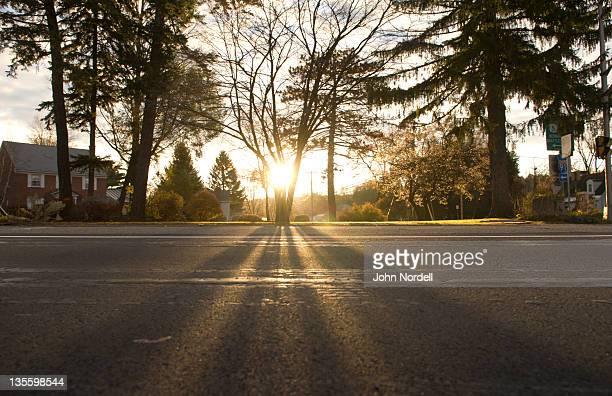 sunrise peeking through trees on a road in greenfield, ma - sunrise dawn stock pictures, royalty-free photos & images