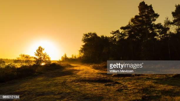 sunrise picknick - william mevissen stockfoto's en -beelden