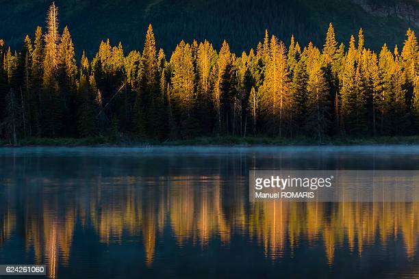 sunrise - two medicine lake montana stock photos and pictures