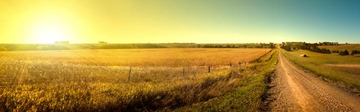 Sunrise Road.  Sun rising on South Dakota dirt road. 186239237