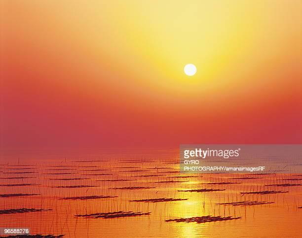 sunrise, saga prefecture, kyushu, japan - 佐賀県 ストックフォトと画像