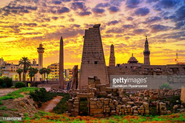 sunrise scene of luxor temple,  ancient egyptian temple complex located on the east bank of the nile river in the city - egypt stock pictures, royalty-free photos & images