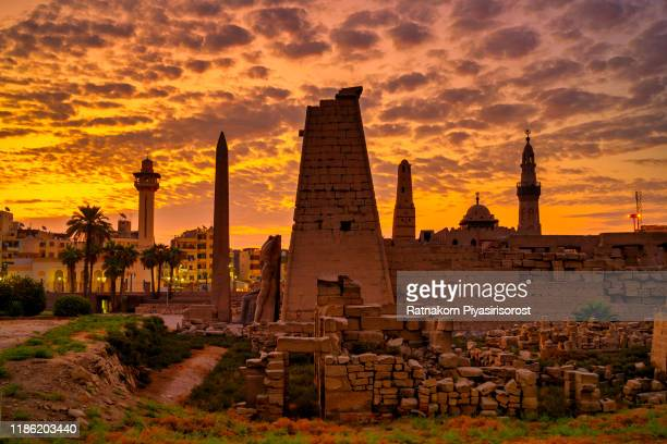 sunrise scene of luxor temple in center of luxor city, egypt - cartouche of ramses stock photos and pictures