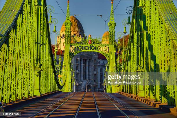 sunrise scene of vintage cable car on liberty bridge at budapest, hungary - tram stockfoto's en -beelden