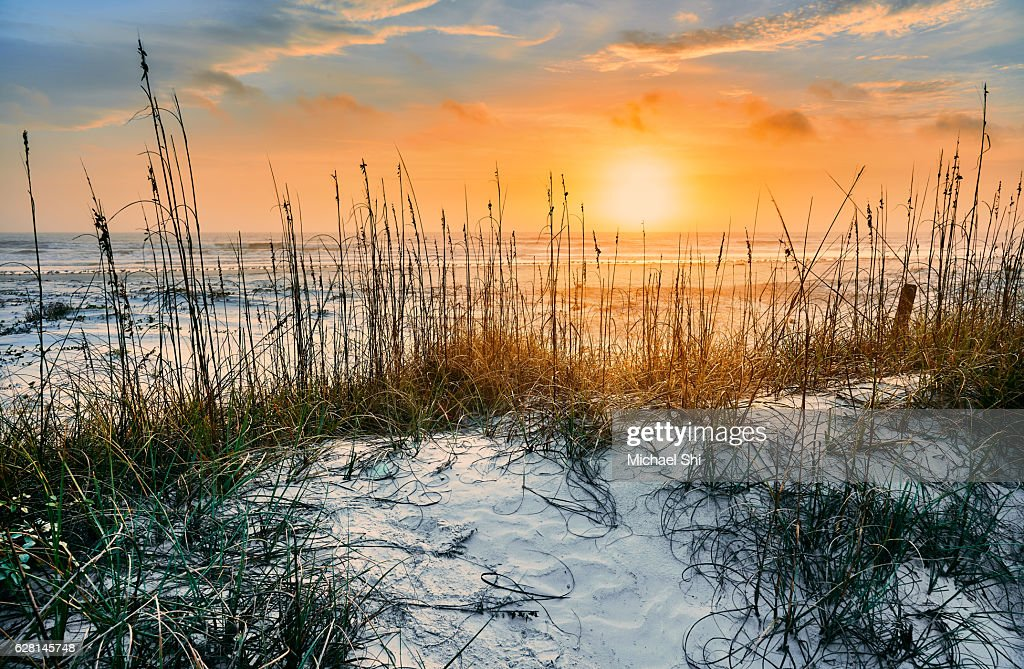 sunrise seen from white sandy beach of Cumberland Island National Seashore's undisturbed wilderness in winter : Foto de stock