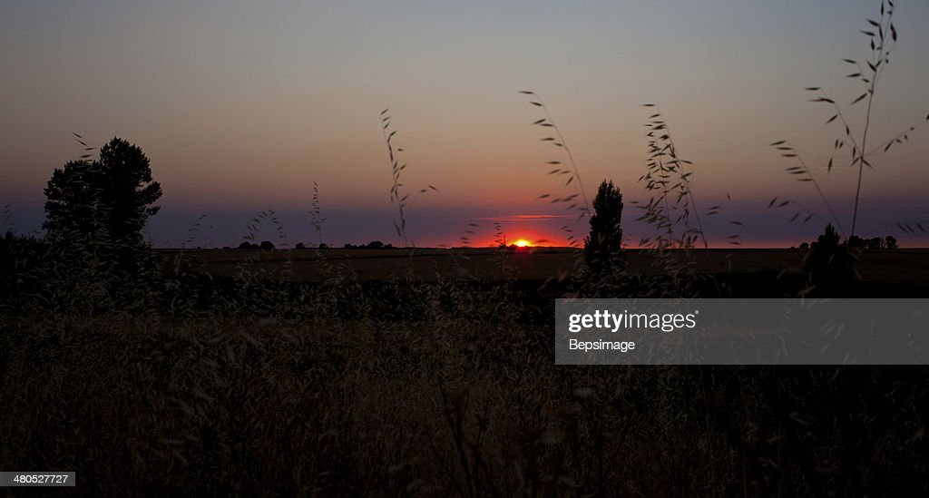 Sunrise, Spanish countryside : Stock Photo
