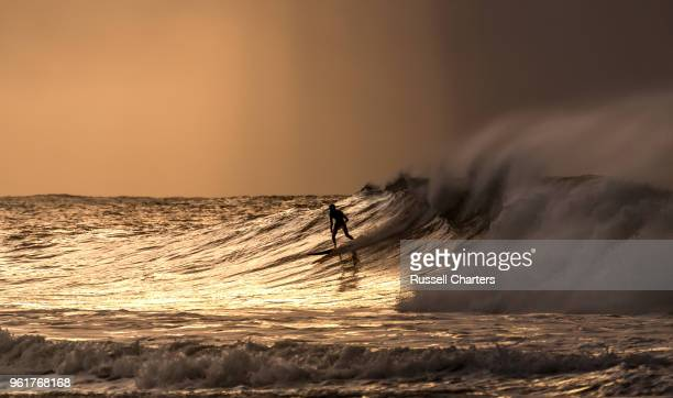 sunrise surfing - coastal feature stock pictures, royalty-free photos & images