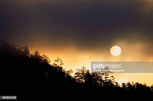 Sunrise Through Forest Fire Smoke