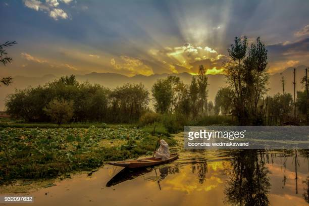 sunrise view of a dal lake srinagar jammu an kashmir, india, - kashmir stock photos and pictures