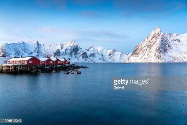 sunrise view of reine, norway - ノルウェー文化 ストックフォトと画像